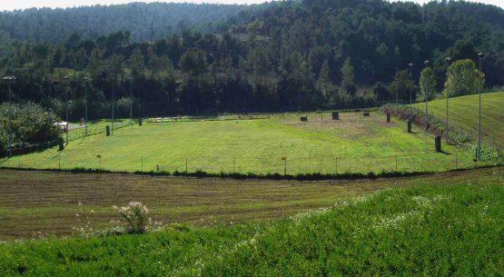 Excelentes notas de Políticas Silvoagropecuarias y Rurales