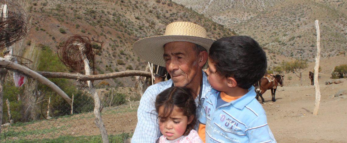 Informe final: Indicadores de calidad de vida y estándares de vida en los territorios rurales de Chile.