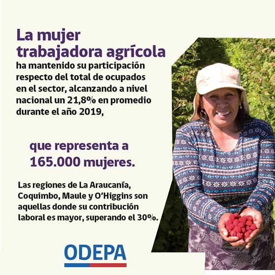 Nuestro campo en cifras - mujer rural
