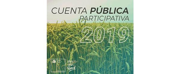 Noticia de la Cuenta Pública Participativa 2019