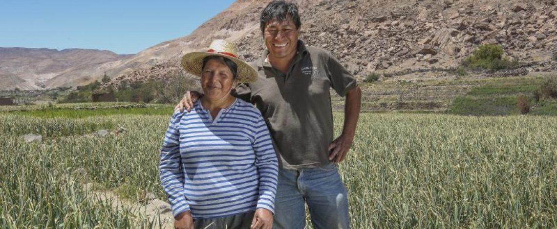 Agrobiodiversidad, por María Emilia Undurraga, Eve Crowley y Carlos Recondo