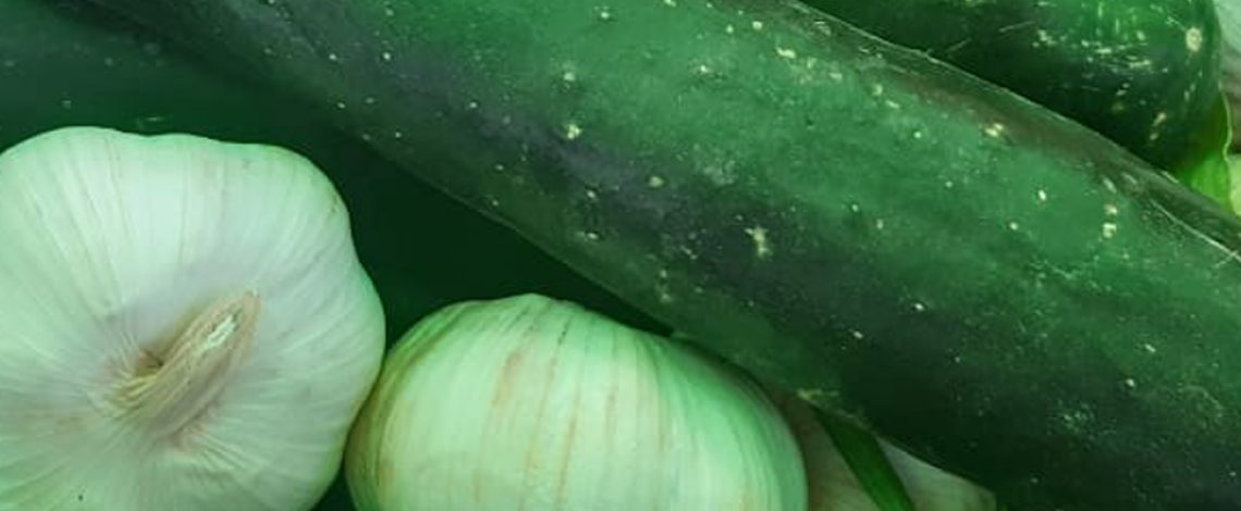 Boletín de hortalizas, febrero 2021