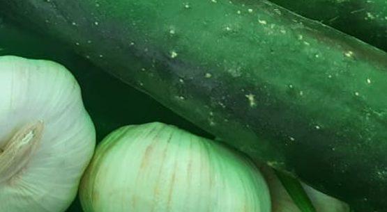 Boletín de hortalizas, noviembre 2020