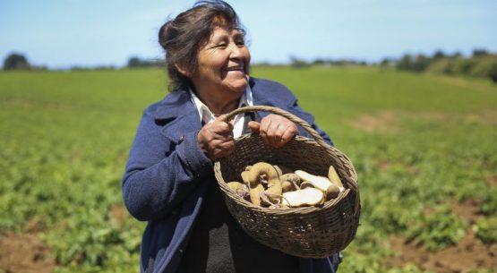 OPINIÓN   «Mundo Rural», en La Segunda