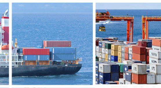 Coyuntura internacional: situación del comercio exterior silvoagropecuario post Covid-19