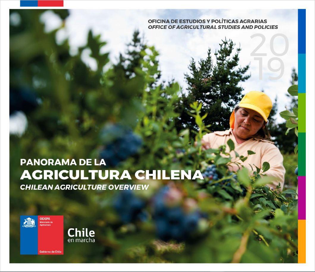 Panorama de la Agricultura 2019