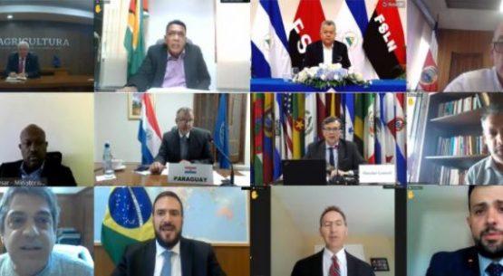 Países de las Américas llevarán acción conjunta para cumbre de sistemas alimentarios de la ONU a encuentro previo en Roma