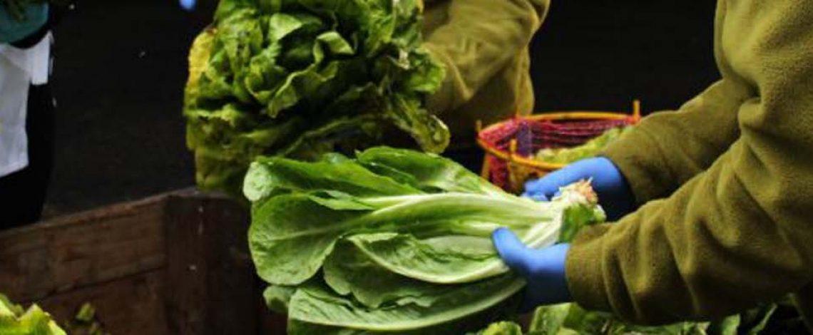 Los Bancos de Alimentos y su rol para reducir el desperdicio de alimentos.