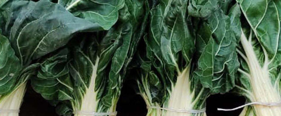 Boletín de hortalizas, junio 2021