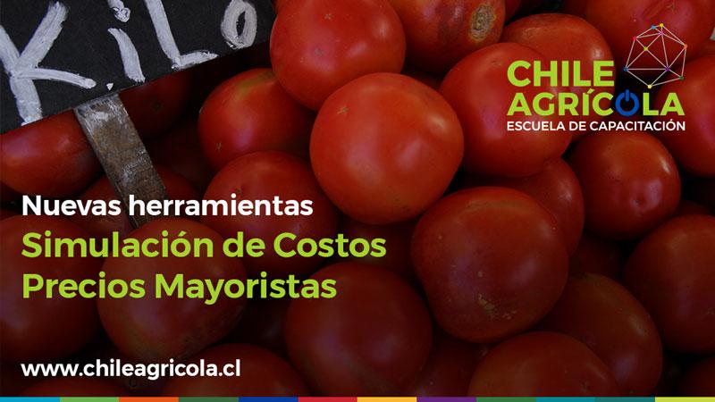 Nuevas herramientas Chile Agrícola