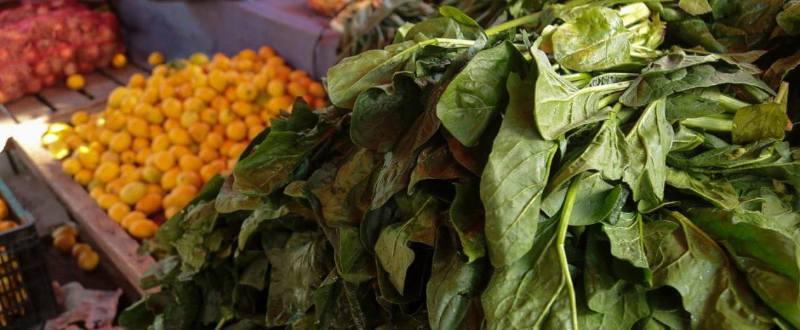 Ministra Undurraga llama a reducir las pérdidas y desperdicios de alimentos promoviendo iniciativas y medidas a escala local