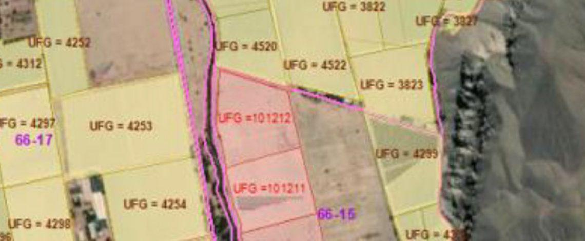 Catastro Frutícola Nacional: Un análisis geográfico – estructural de 12 años  (2008 – 2020)